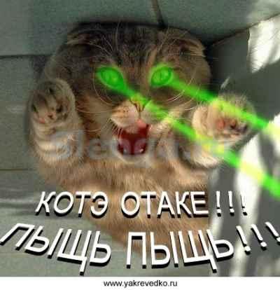 Отаке